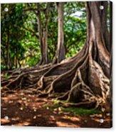 Jurassic Park Tree Group Acrylic Print