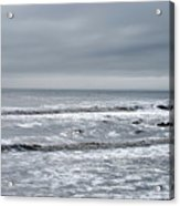 Just A Grey Day Acrylic Print