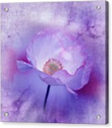 Just A Lilac Dream -3- Acrylic Print by Issabild -