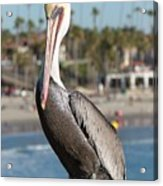 Just Another Day At The Beach Acrylic Print