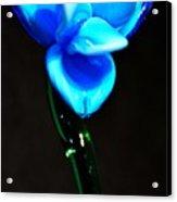 Just Blue Acrylic Print