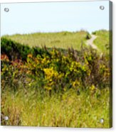 Just Over The Hill Acrylic Print