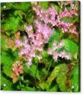 Just Pink Acrylic Print