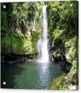 Kaiate Falls Acrylic Print