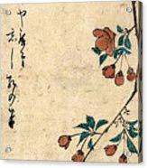 Kaido Ni Shokin - Small Bird On A Branch Of Kaidozakura Acrylic Print