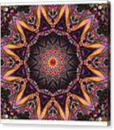 kaleido Perf10 9cAvi 44 Acrylic Print