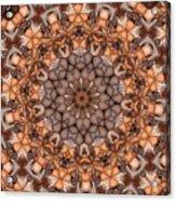 Kaleidoscope 121 Acrylic Print