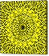 Kaleidoscope 957 Acrylic Print