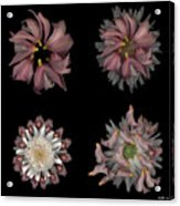 Kaleidoscope Block Two Acrylic Print