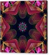 Kaleidoscope Christmas Poinsettia  Acrylic Print