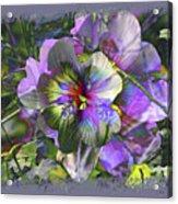 Kaleidoscope Pollen Acrylic Print