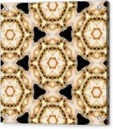 Kaleidoscopes- 11 Acrylic Print