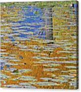 Kaloya Pond Autumn Acrylic Print