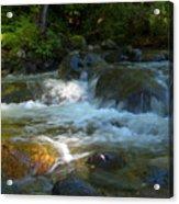 Kanaka Creek Acrylic Print