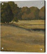 Kanha Meadows Acrylic Print