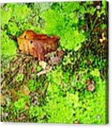 Kate Moss Acrylic Print