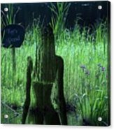 Kates Pond Acrylic Print