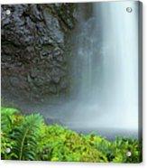 Kauai Inland Falls Acrylic Print