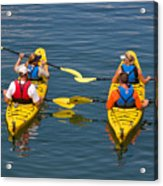 Kayakers In Bar Harbor Maine Acrylic Print