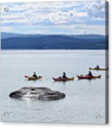 Kayakers Paddle To Fishing Cone On Yellowstone Lake Acrylic Print