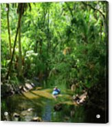 Kayaking In Tropical Paradise Acrylic Print