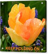 Keep Holding On Acrylic Print