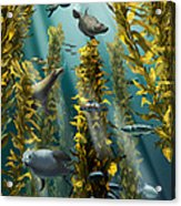 Kelp Forest With Seals Acrylic Print