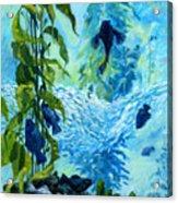 Kelp Tank, Monterey Bay Aquarium Acrylic Print