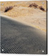 Kelso Dunes Portrait Acrylic Print