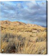 Kelso Dunes Wilderness Acrylic Print