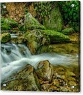 Kens Creek In Cranberry Wilderness Acrylic Print