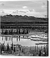 Kettle Pond And The Alaska Range Acrylic Print