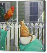 Key West Buddies Acrylic Print