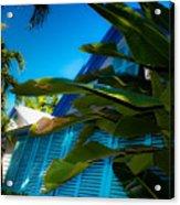 Key West House Acrylic Print