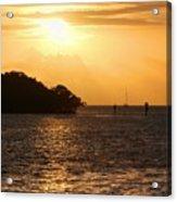Key West Mangrove Sunrise Acrylic Print