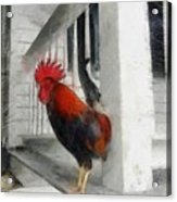 Key West Porch Rooster Acrylic Print by Michelle Calkins