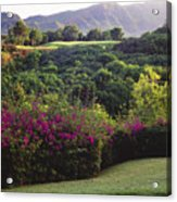 Kiele Course, Flowers And Vegetation Acrylic Print