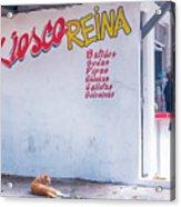 Kiesco Reina Acrylic Print