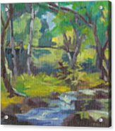 Kilauea Stream Acrylic Print