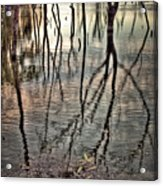 Kill Creek 8394 Acrylic Print