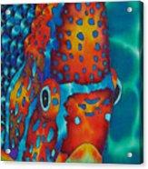 King Angelfish Acrylic Print by Daniel Jean-Baptiste