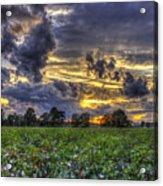 King Cotton Sunset Art Statesboro Georgia Acrylic Print