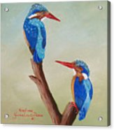 King Fishers Acrylic Print