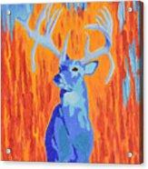 King Of The Fall Acrylic Print