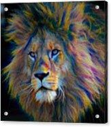 King Of The Jungle Acrylic Print