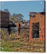 King Of The Rubble Acrylic Print