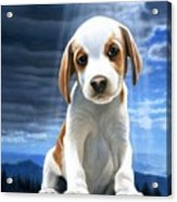 King Of The World-beagle Puppy Acrylic Print