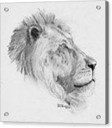 King Acrylic Print