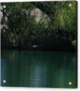 Kingfisher In Flight Acrylic Print