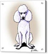 Kiniart White Poodle Acrylic Print